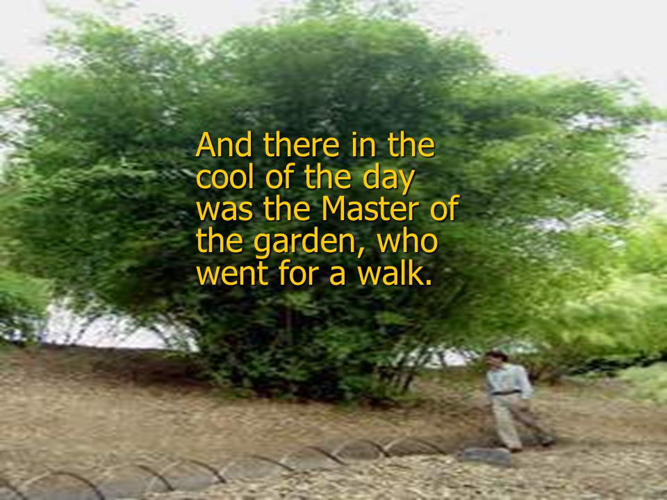 And there in the cool of the day was the Master of the garden, who went for a walk.