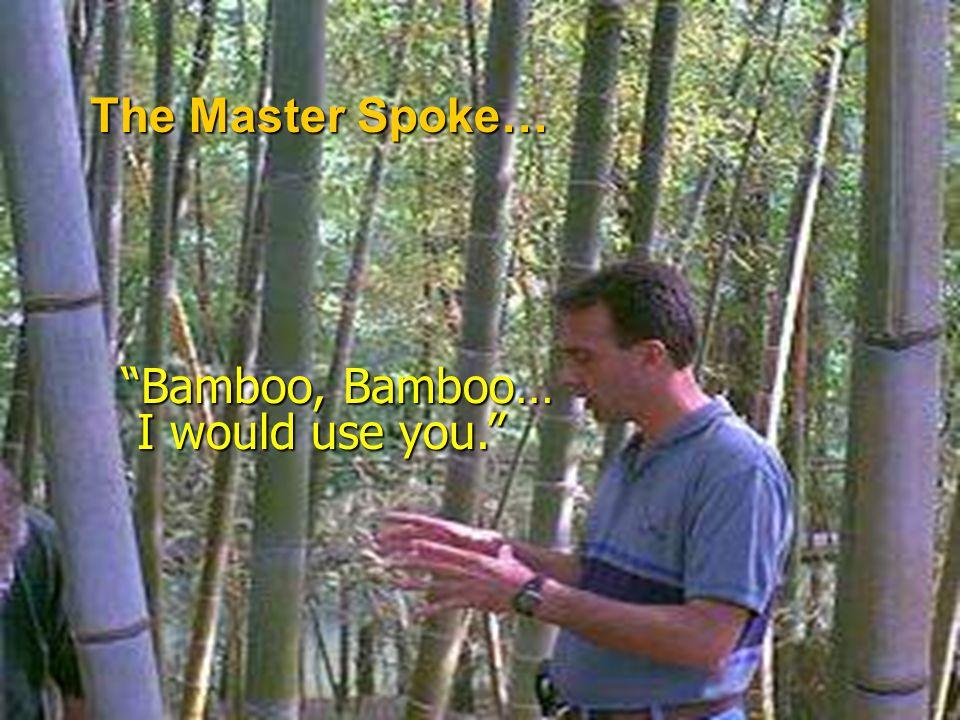 The Master Spoke… Bamboo, Bamboo… I would use you.