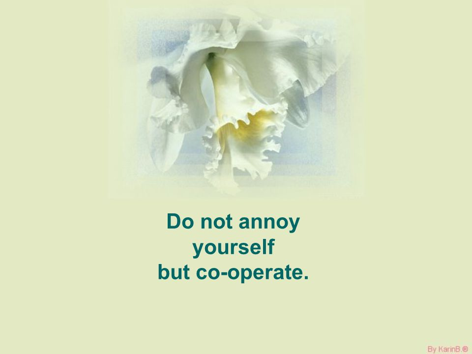 Do not annoy yourself but co-operate.