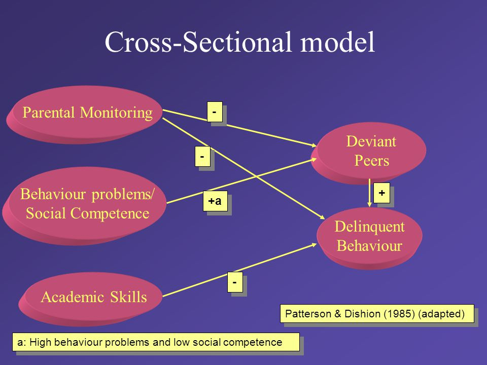 Cross-Sectional model Parental Monitoring Behaviour problems/ Social Competence Academic Skills Deviant Peers Delinquent Behaviour - - - - - - + + +a a: High behaviour problems and low social competence Patterson & Dishion (1985) (adapted)