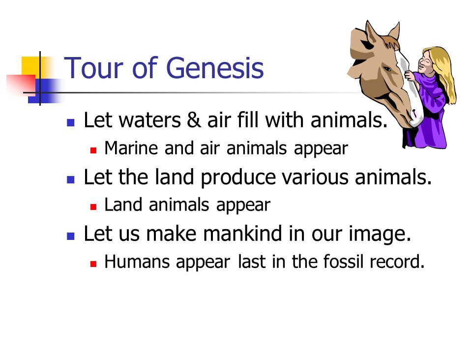 Tour of Genesis Let waters & air fill with animals. Marine and air animals appear Let the land produce various animals. Land animals appear Let us mak