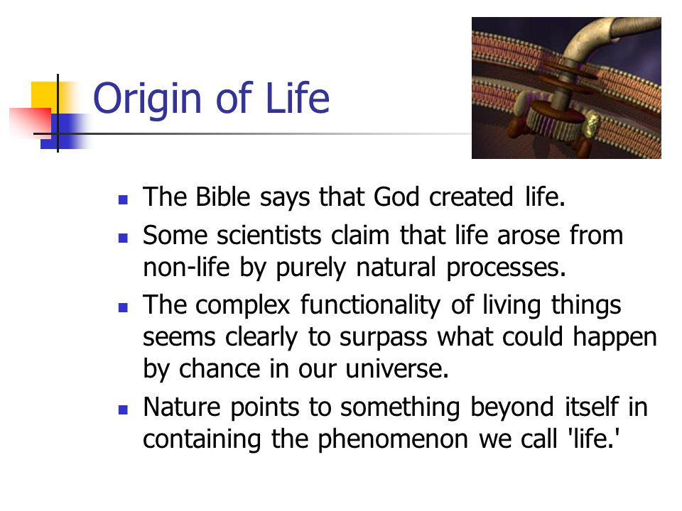 Origin of Life The Bible says that God created life. Some scientists claim that life arose from non-life by purely natural processes. The complex func