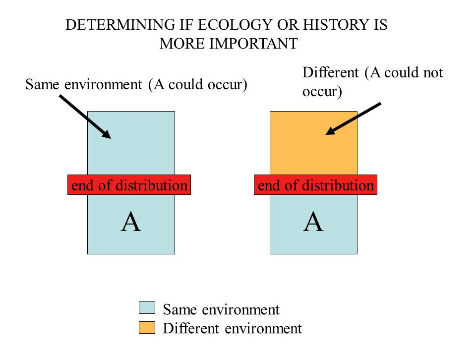 A A end of distribution Same environment Different environment DETERMINING IF ECOLOGY OR HISTORY IS MORE IMPORTANT Same environment (A could occur) Di