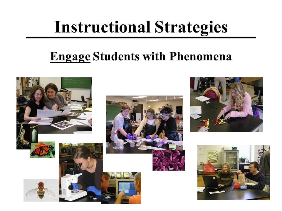 Instructional Strategies Engage Students with Phenomena
