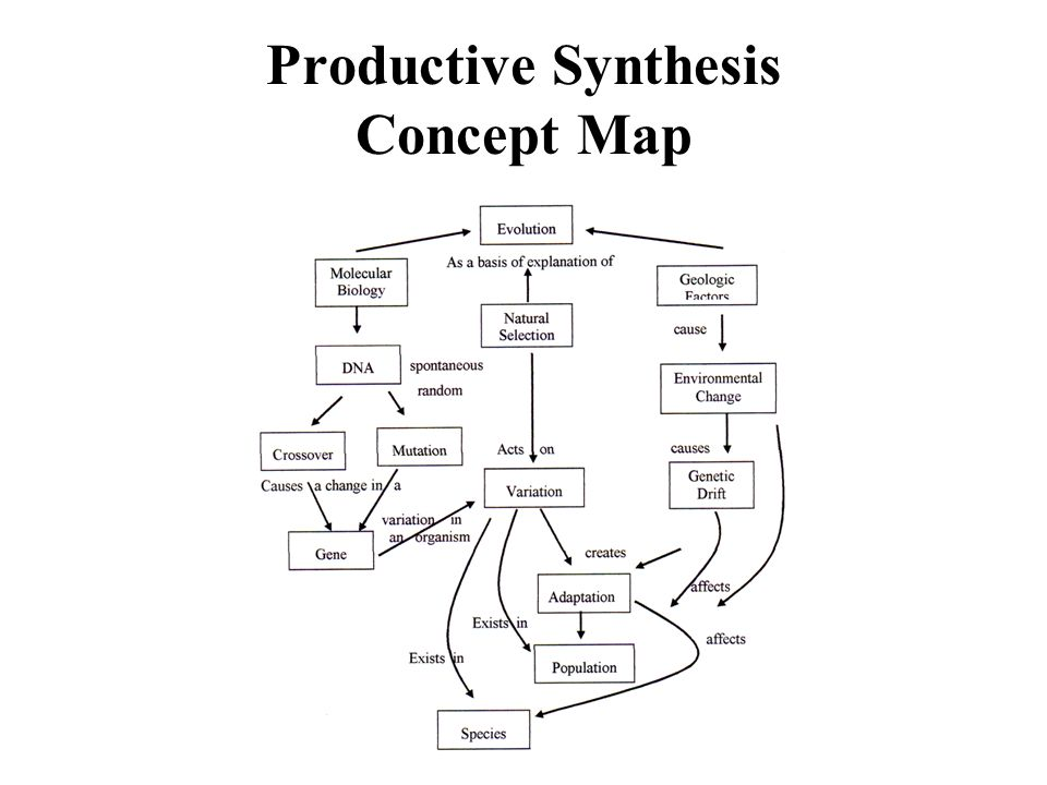 Productive Synthesis Concept Map