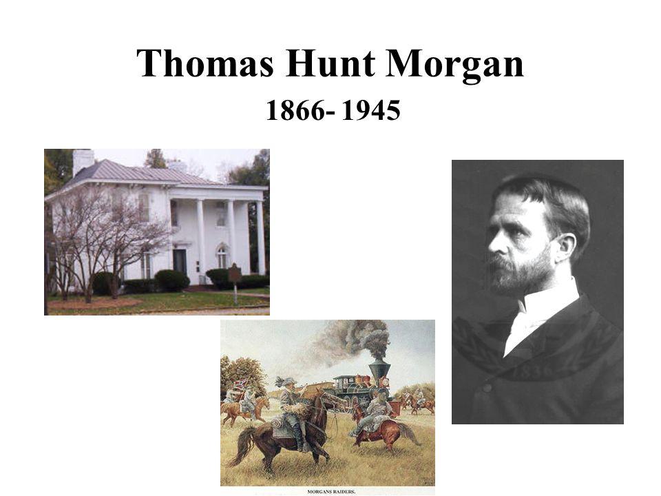 Thomas Hunt Morgan 1866- 1945
