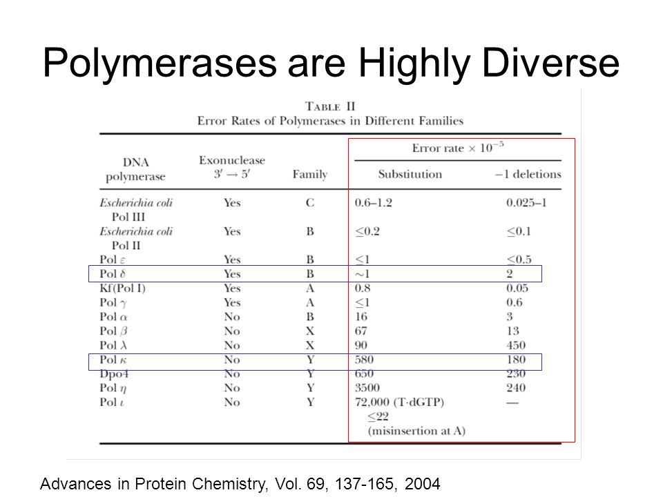 Polymerases are Highly Diverse Advances in Protein Chemistry, Vol. 69, 137-165, 2004