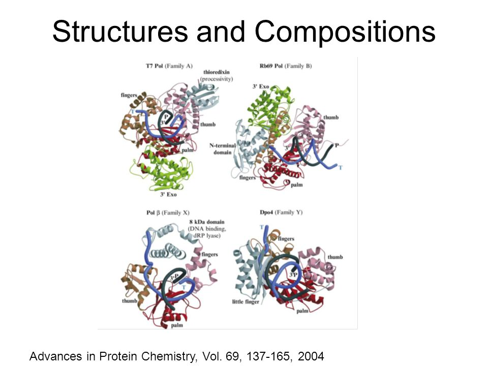 Structures and Compositions Advances in Protein Chemistry, Vol. 69, 137-165, 2004