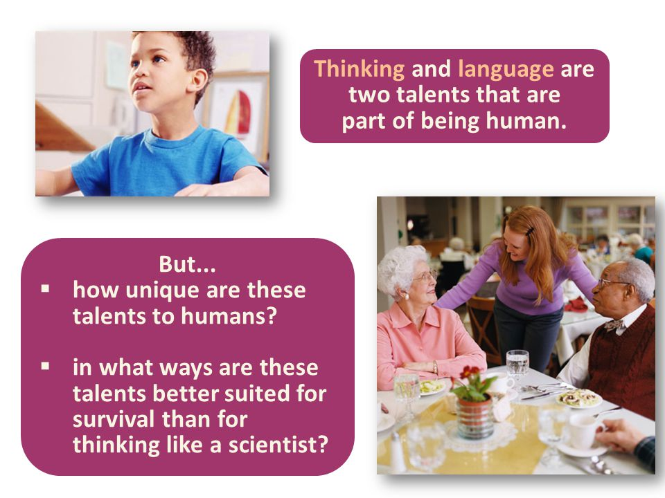 Thinking and language are two talents that are part of being human. But...  how unique are these talents to humans?  in what ways are these talents