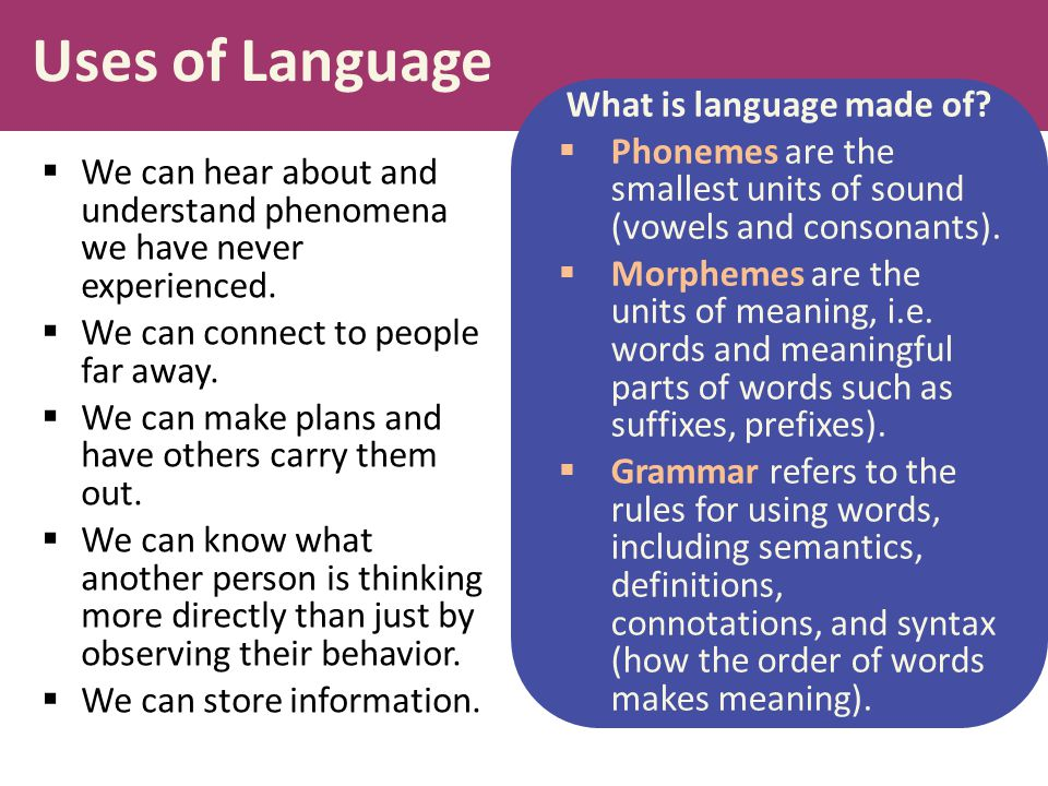 Uses of Language  We can hear about and understand phenomena we have never experienced.  We can connect to people far away.  We can make plans and