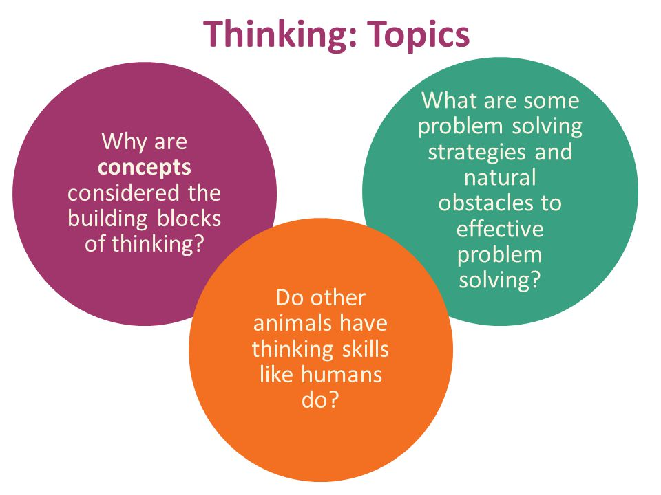 Thinking: Topics Why are concepts considered the building blocks of thinking? What are some problem solving strategies and natural obstacles to effect