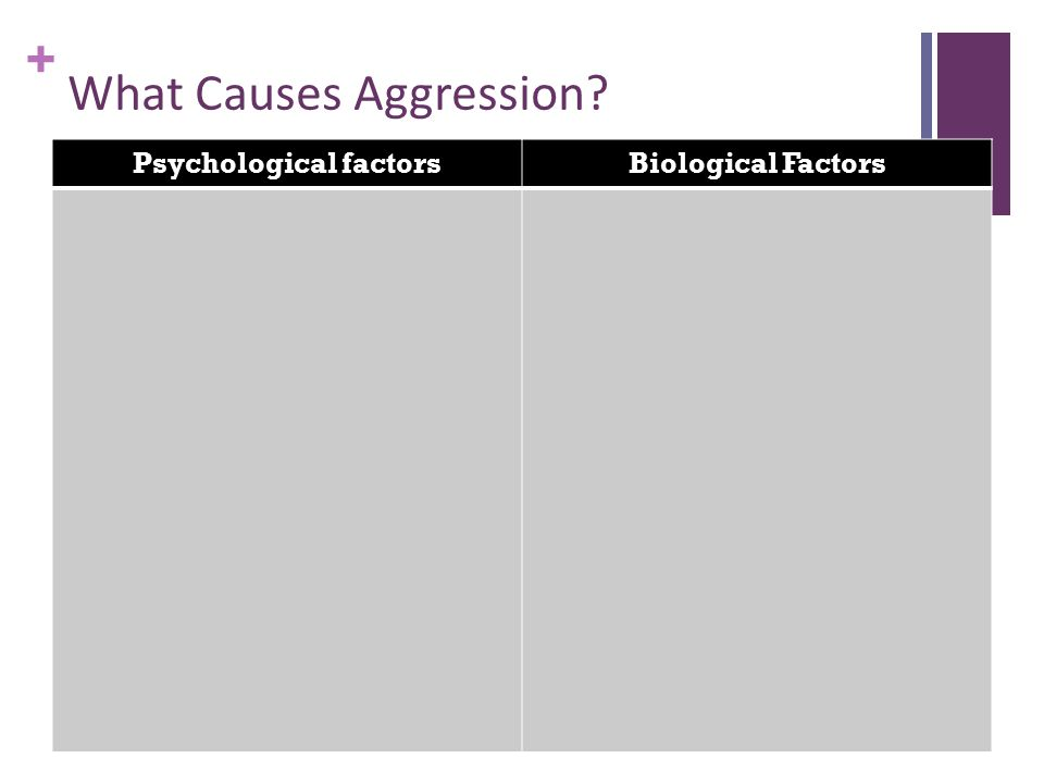 + What Causes Aggression Psychological factorsBiological Factors