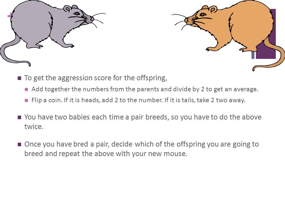 + Mice.