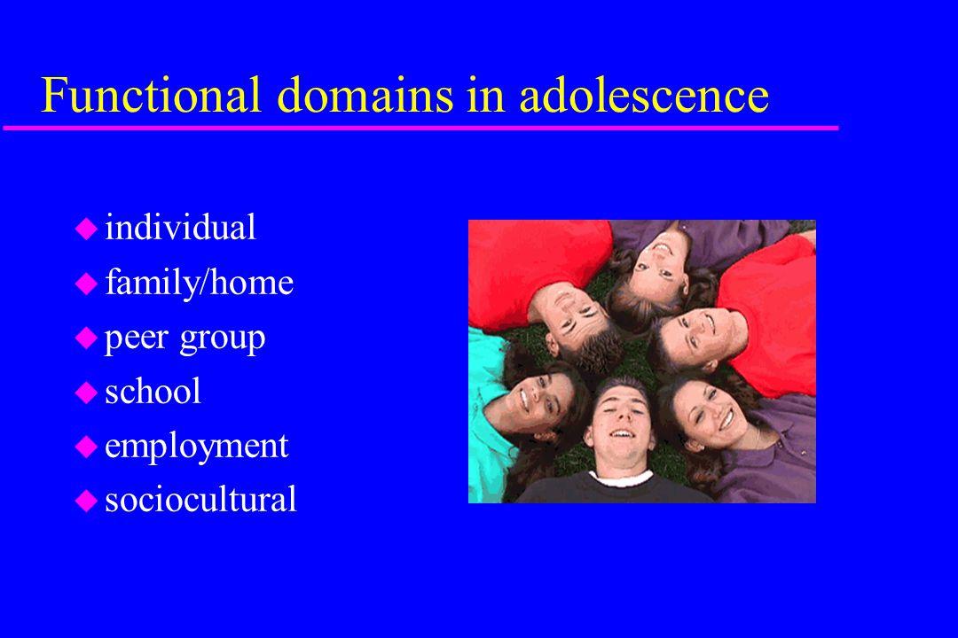 Functional domains in adolescence u individual u family/home u peer group u school u employment u sociocultural