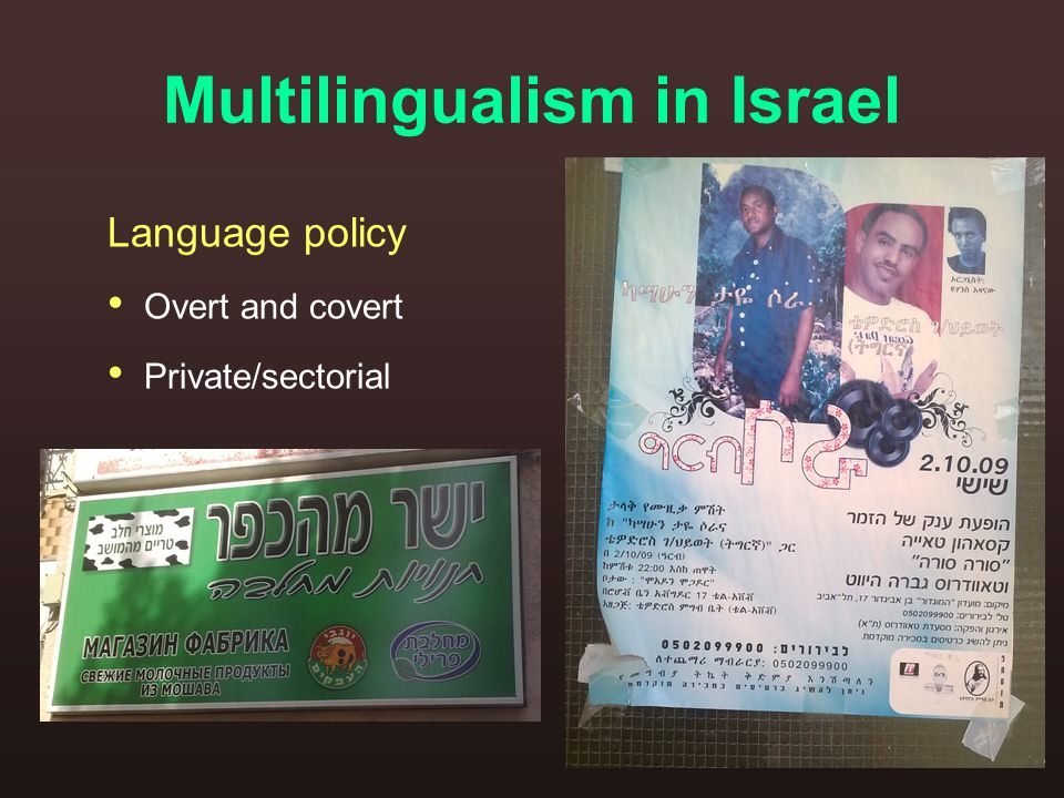 Multilingualism in Israel Language policy Overt and covert Private/sectorial