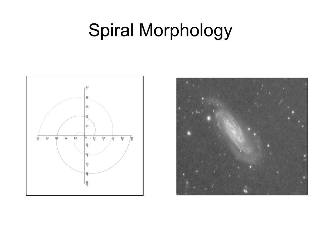 Spiral Morphology