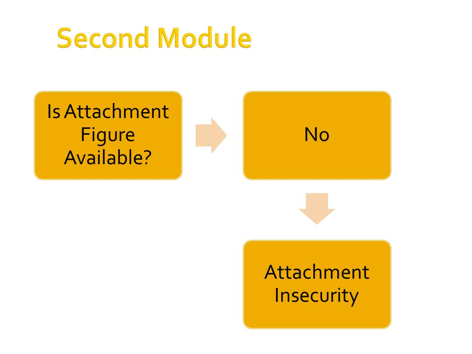 Second Module