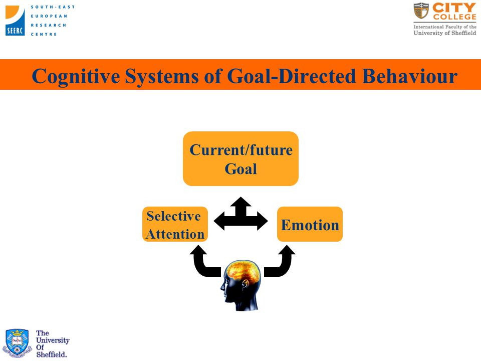 Cognitive Systems of Goal-Directed Behaviour Visual Attention  Restricted capacity   Facilitation of target input   Inhibition of distracting information Emotion  Evaluation in terms of current/future goals