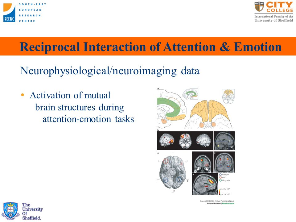 Attentional Influences on Emotion Prior attention state determines ensuing affective evaluations (Raymond et al., 2003)  Distracting stimuli are more devalued than target and novel  2-item visual localization & evaluation tasks