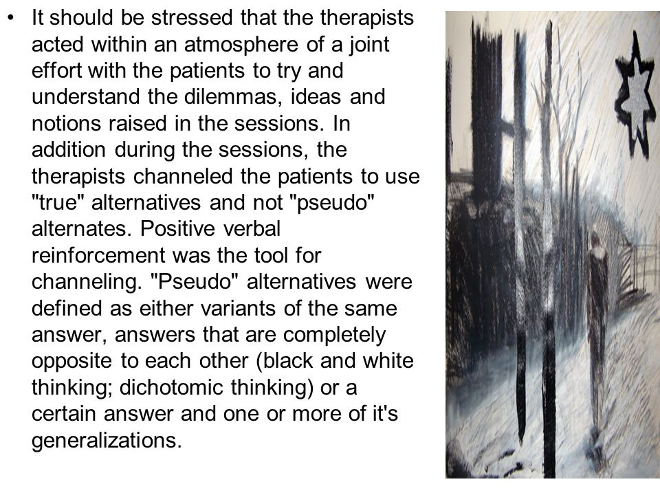 It should be stressed that the therapists acted within an atmosphere of a joint effort with the patients to try and understand the dilemmas, ideas and notions raised in the sessions.