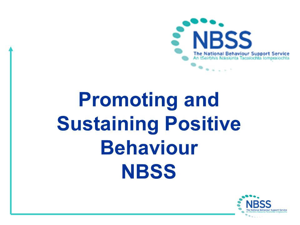 NBSS The NBSS is working with 50 schools identifying, developing and disseminating current good practice and assisting with behaviour issues which impede teaching and learning.