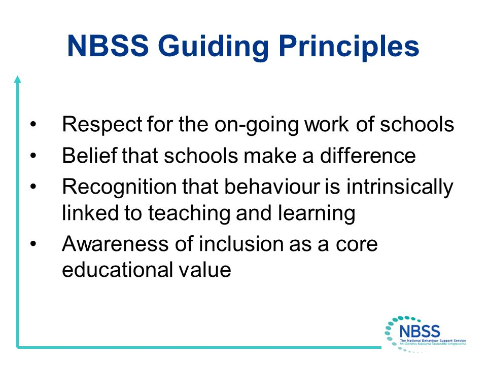 Behaviour Policy at Whole School Level Effective communication with pupils around behaviour in school Strategies to motivate pupils to behave in ways which are agreed and communicated The correction of behaviour in ways that lessen recurrence Strategies to support good behaviour at whole school, classroom and individual level System/strategies to effectively address challenging behaviour
