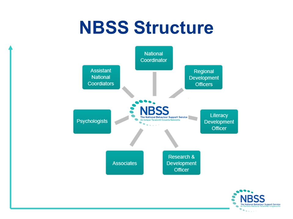 NBSS Structure