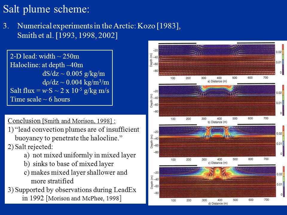 Salt plume scheme: 1.Duffy et al. [1997, 1999] in the Southern Ocean