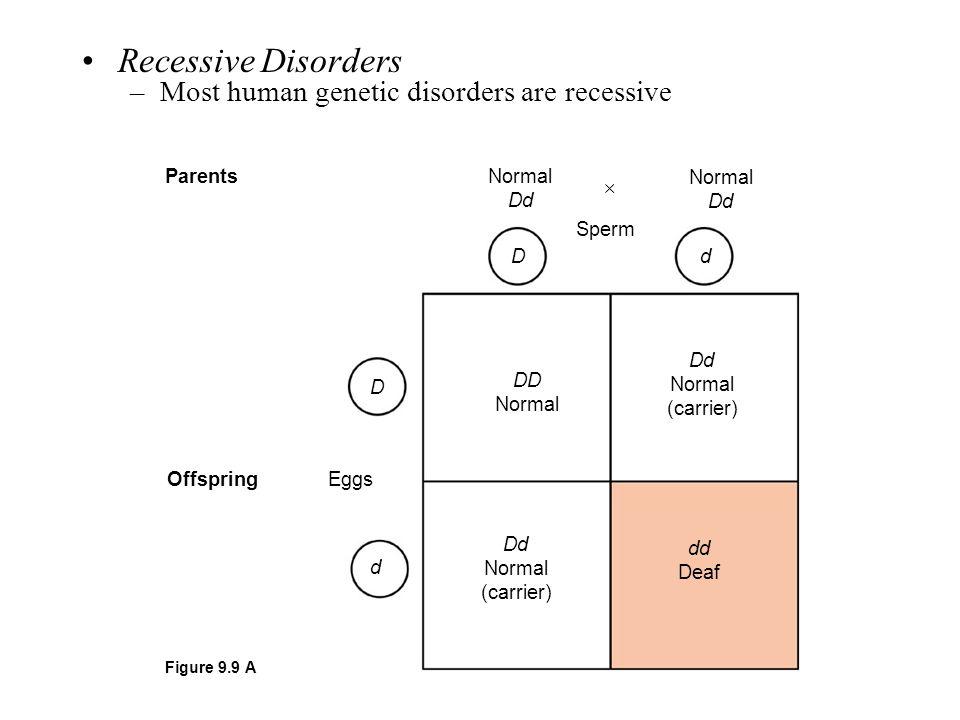 Parents Offspring Sperm Normal Dd Normal Dd  Eggs D d DD Normal Dd Normal (carrier) Dd Normal (carrier) dd Deaf Figure 9.9 A Recessive Disorders –Mos