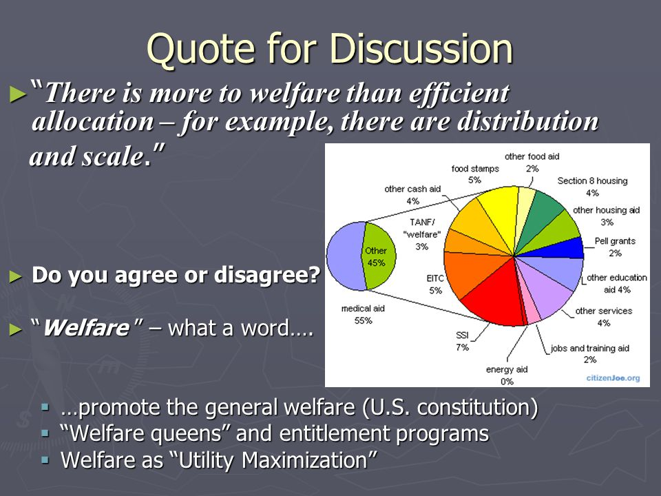 Quote for Discussion ► There is more to welfare than efficient allocation – for example, there are distribution and scale. and scale. ► Do you agree or disagree.