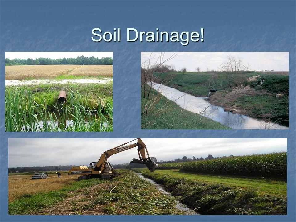 Soil Drainage!