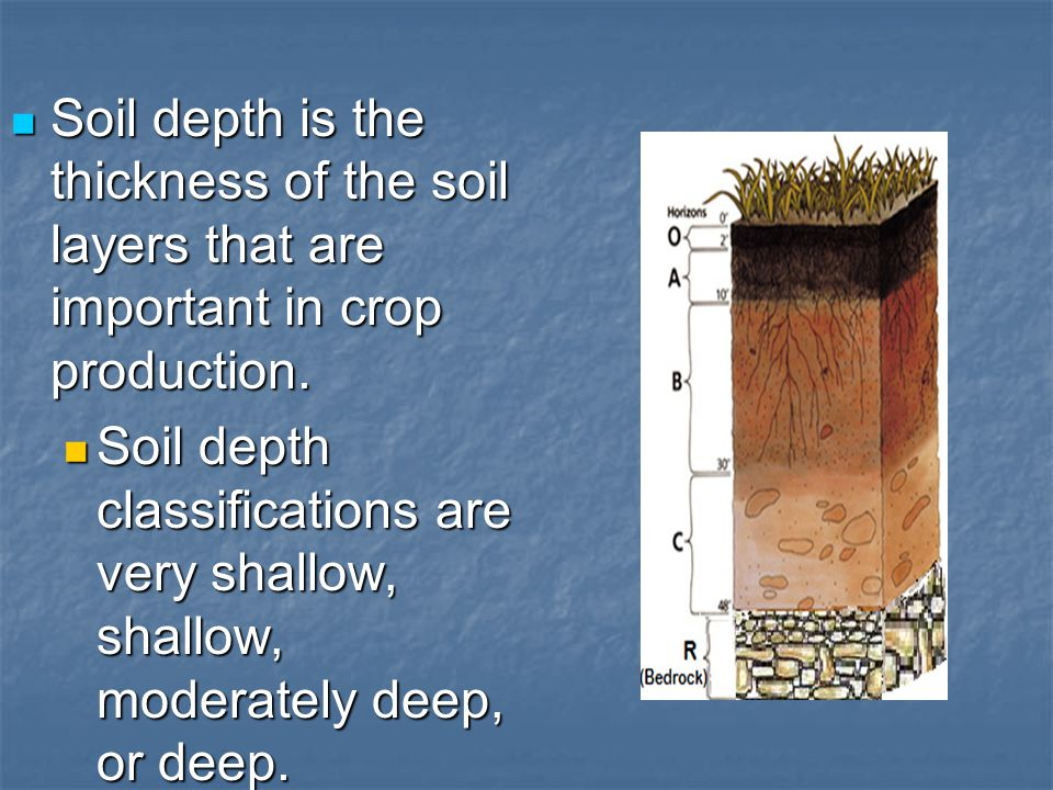 Soil depth is the thickness of the soil layers that are important in crop production. Soil depth is the thickness of the soil layers that are importan