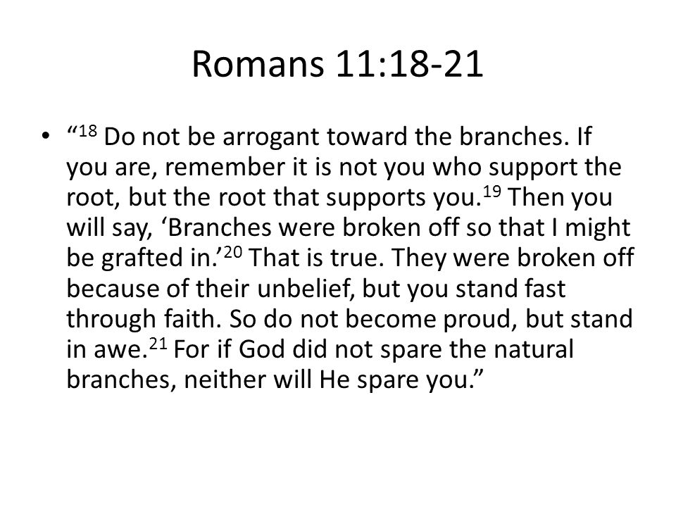 """Romans 11:18-21 """" 18 Do not be arrogant toward the branches. If you are, remember it is not you who support the root, but the root that supports you."""