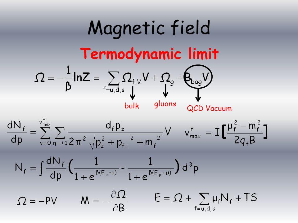 Termodynamic limit bulk gluons QCD Vacuum Magnetic field