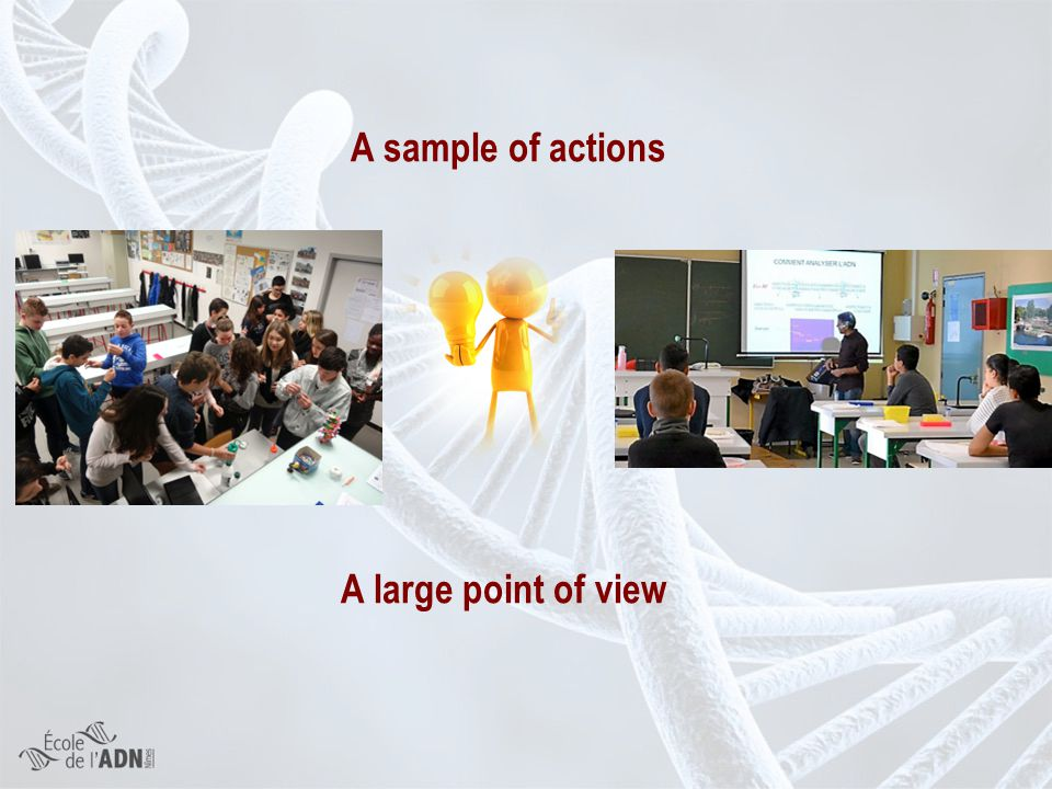 A sample of actions A large point of view A sample of actions A large point of view