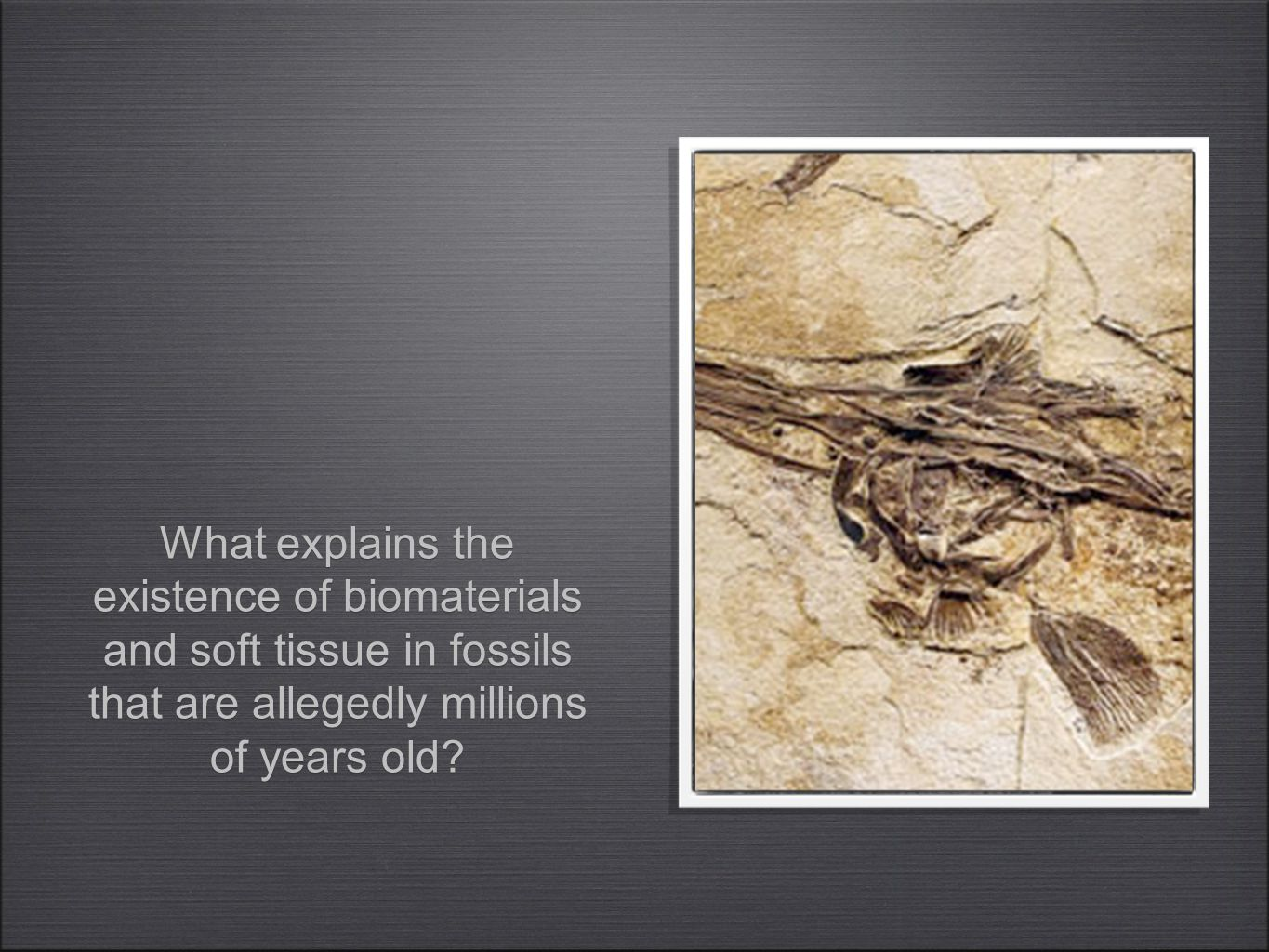 What explains the existence of biomaterials and soft tissue in fossils that are allegedly millions of years old