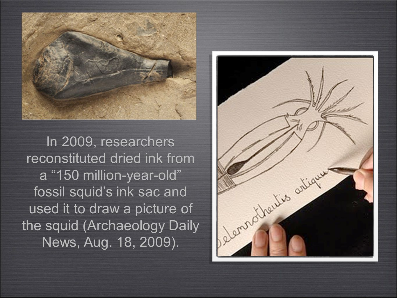 In 2009, researchers reconstituted dried ink from a 150 million-year-old fossil squid's ink sac and used it to draw a picture of the squid (Archaeology Daily News, Aug.