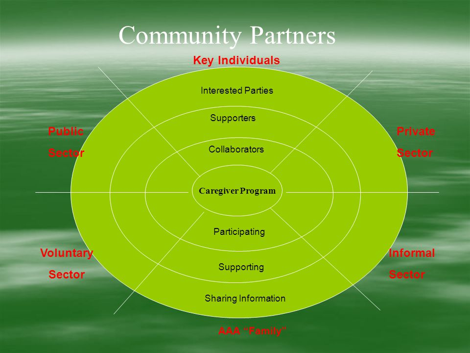 Caregiver Program Interested Parties Supporters Collaborators Participating Supporting Sharing Information AAA Family Informal Sector Private Sector Key Individuals Public Sector Voluntary Sector Community Partners
