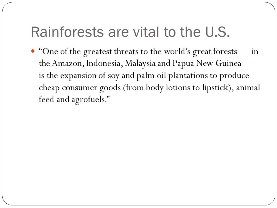 Rainforests are vital to the U.S.