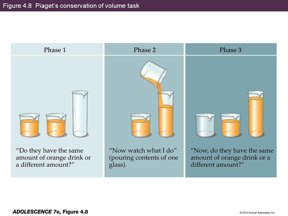 Figure 4.8 Piaget's conservation of volume task