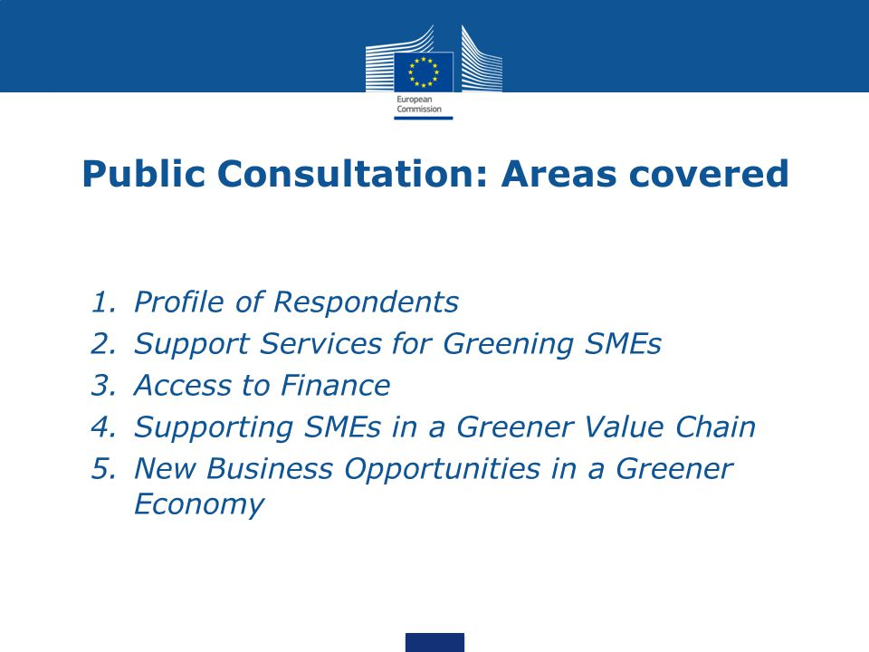 Public Consultation: Areas covered 1.Profile of Respondents 2.Support Services for Greening SMEs 3.Access to Finance 4.Supporting SMEs in a Greener Va