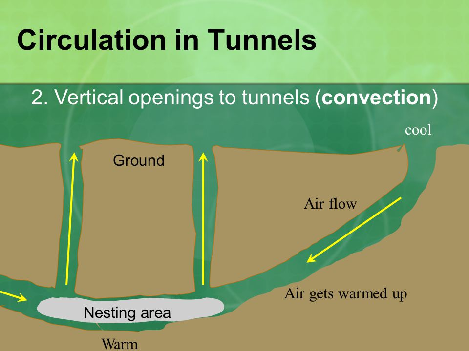 Circulation in Tunnels 2.