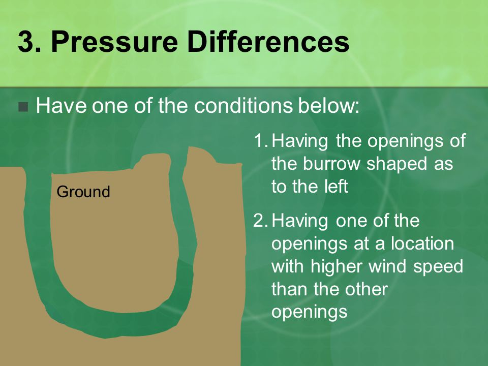 3. Pressure Differences Have one of the conditions below: 1.Having the openings of the burrow shaped as to the left 2.Having one of the openings at a