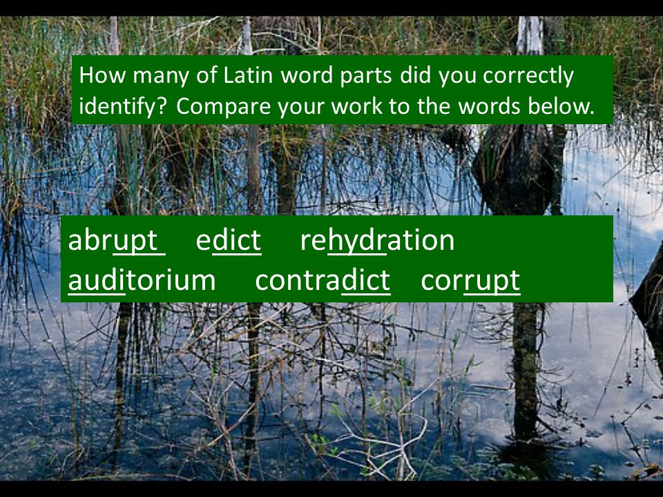 How many of Latin word parts did you correctly identify? Compare your work to the words below. abrupt edict rehydration auditorium contradict corrupt