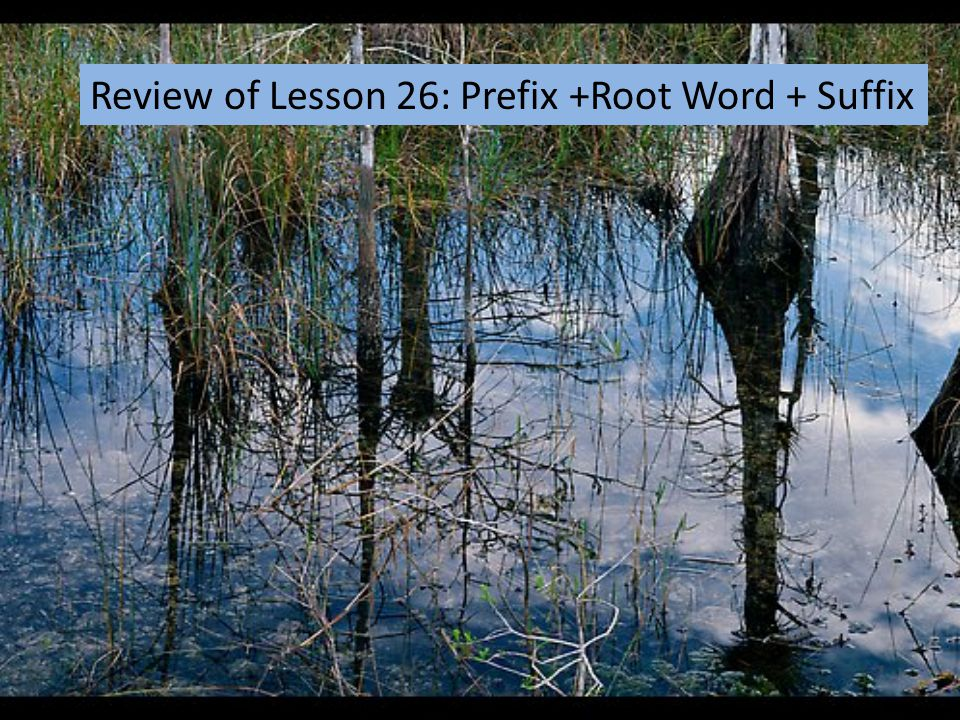 Review of Lesson 26: Prefix +Root Word + Suffix