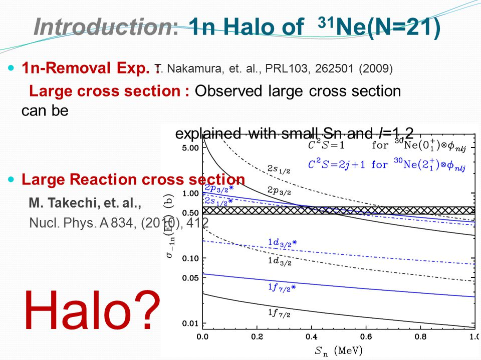 Introduction: 1n Halo of 31 Ne(N=21) 1n-Removal Exp.