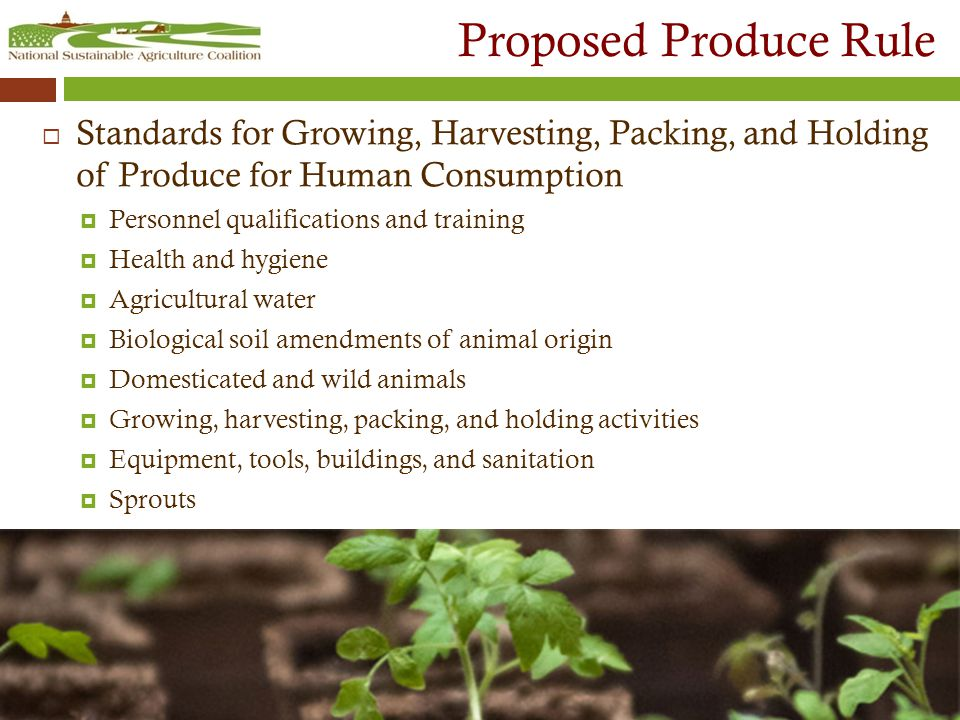 Proposed Produce Rule  Standards for Growing, Harvesting, Packing, and Holding of Produce for Human Consumption  Personnel qualifications and training  Health and hygiene  Agricultural water  Biological soil amendments of animal origin  Domesticated and wild animals  Growing, harvesting, packing, and holding activities  Equipment, tools, buildings, and sanitation  Sprouts