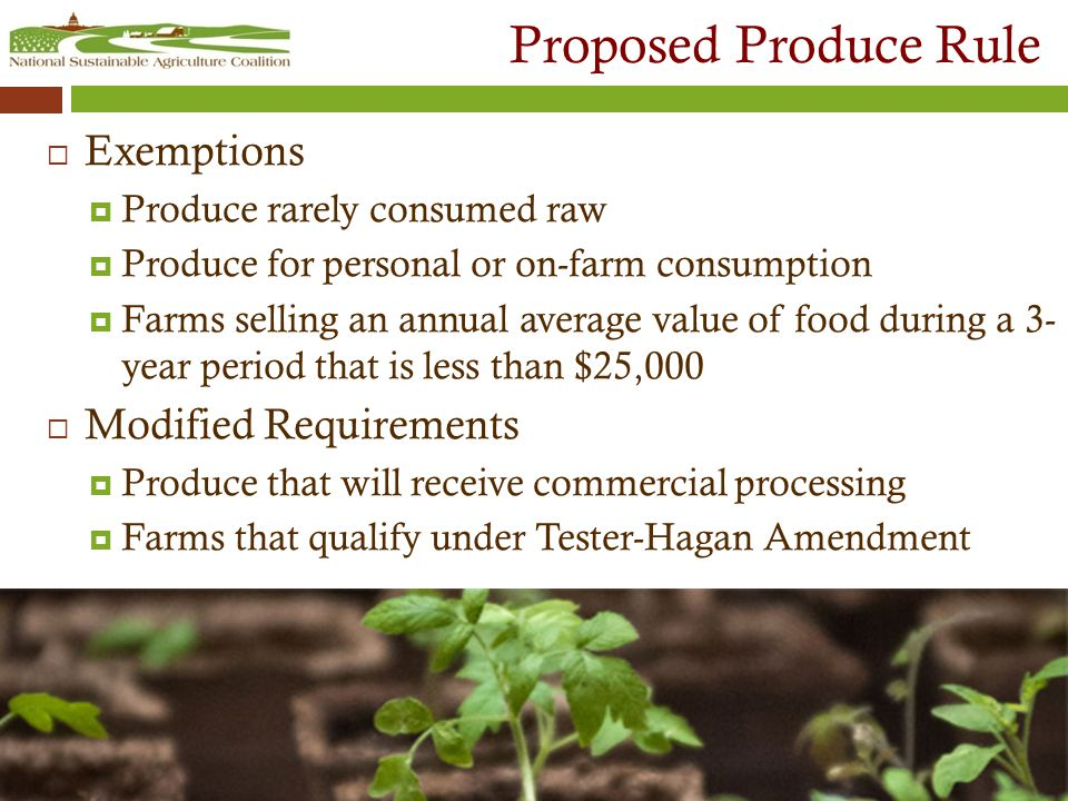 Proposed Produce Rule  Exemptions  Produce rarely consumed raw  Produce for personal or on-farm consumption  Farms selling an annual average value of food during a 3- year period that is less than $25,000  Modified Requirements  Produce that will receive commercial processing  Farms that qualify under Tester-Hagan Amendment