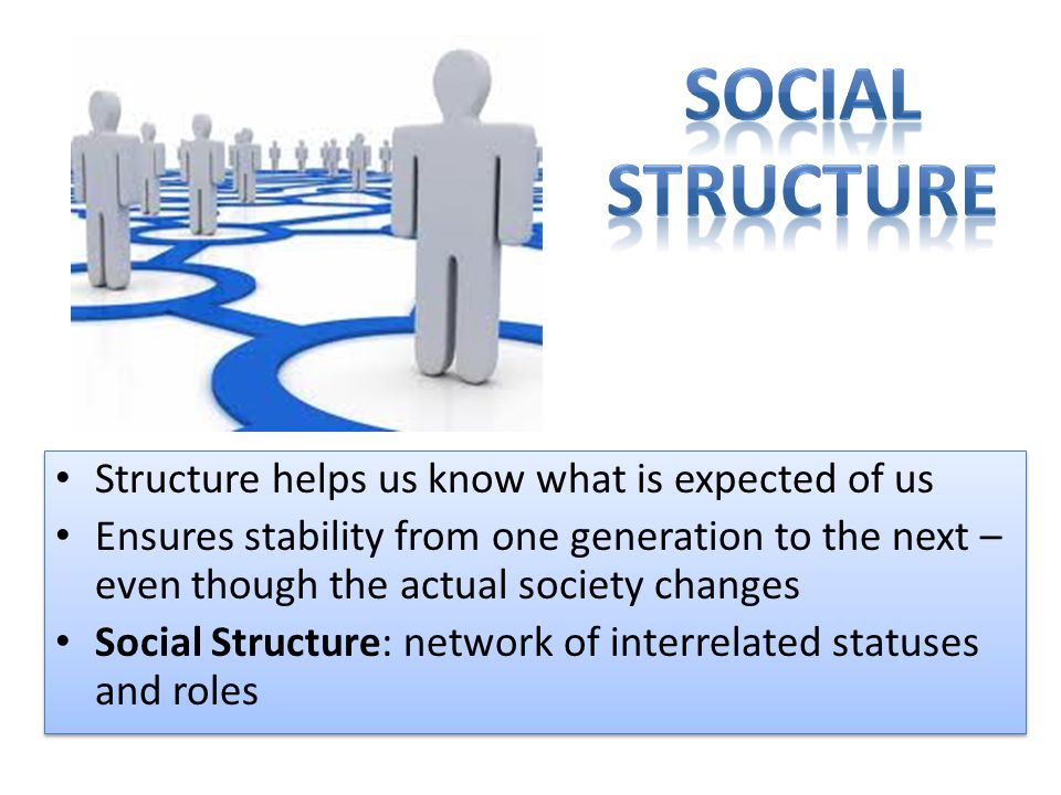 Structure helps us know what is expected of us Ensures stability from one generation to the next – even though the actual society changes Social Structure: network of interrelated statuses and roles Structure helps us know what is expected of us Ensures stability from one generation to the next – even though the actual society changes Social Structure: network of interrelated statuses and roles