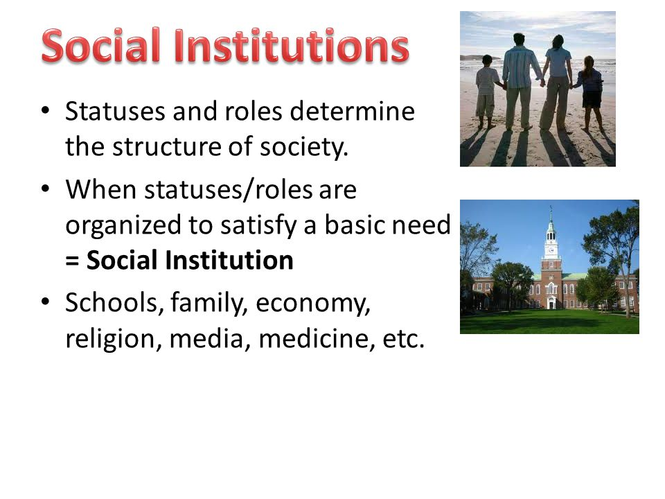 Statuses and roles determine the structure of society.